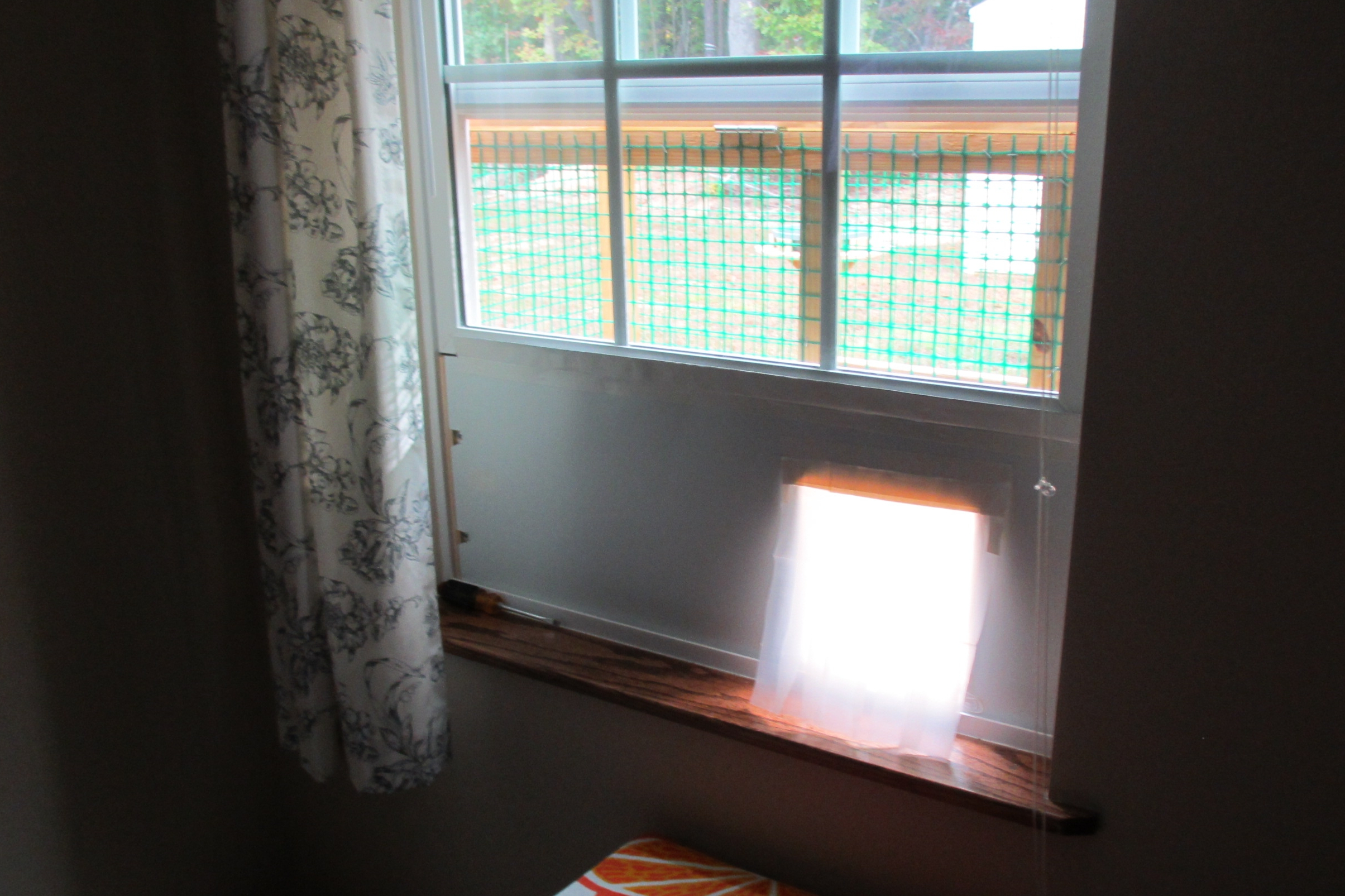 A Simple, Removable Insert I Designed And Built For One Of Our Windows So  The Cat Can Get In And Out Without Getting Bugs, Etc. In Our House. ...